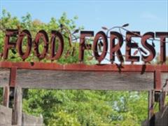 Food forest sign