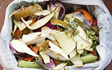 Landing image bins and environment food waste.jpg