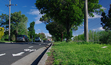 Landing image parking and roads street trees.jpg